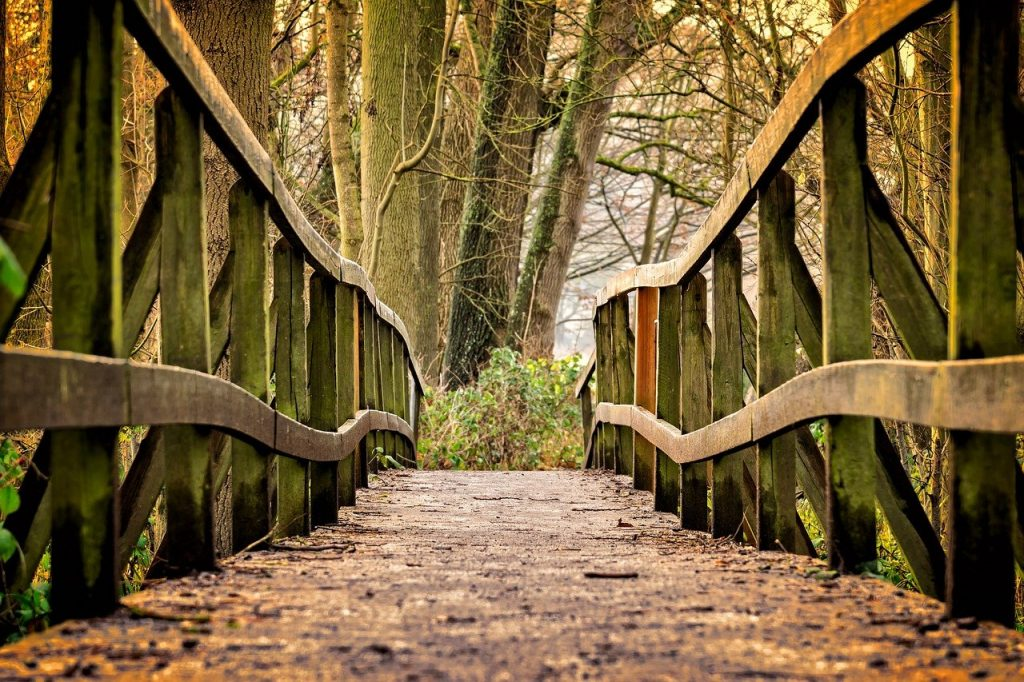 Psychotherapy - Journey with therapist